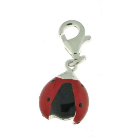 Charms Coccinelle